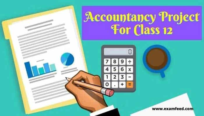 accountancy-project-for-class-12