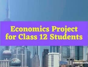 economics-project-for-class-12